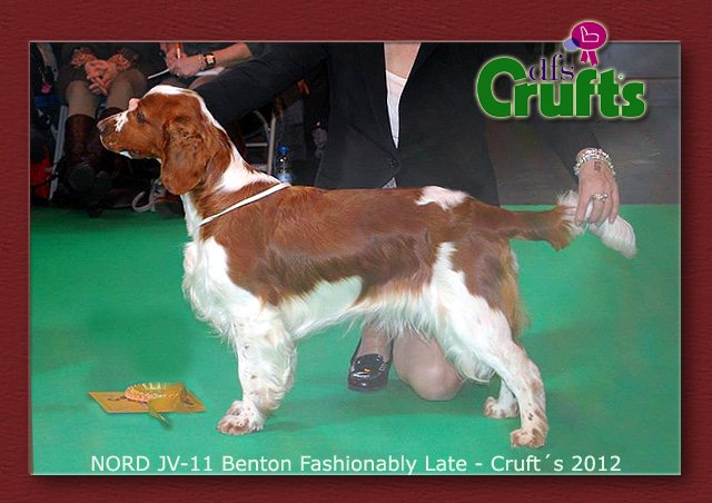 penny_crufts2012_index